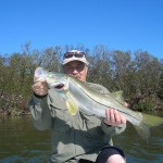 Snook On Fly